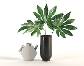 Aralia and Vases 3D