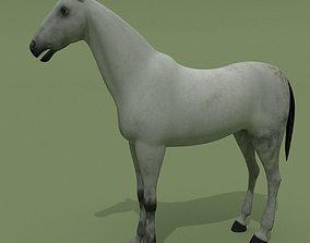 riding 3D model Horse Grey