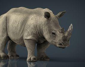 3D asset White Rhinoceros