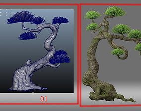 cartoon tree pine tree 3D