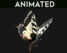 Butterfly 02 3D model