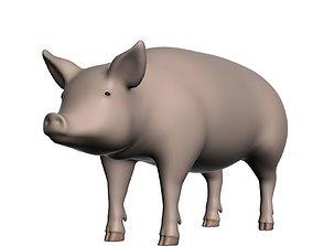 3D Realistic Pig 001