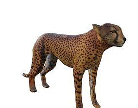 low-poly Animal Wildlife Cheetah 3D Model - Game Ready