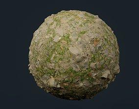 Ground Grass dirt Rock Seamless PBR Texture 3D model