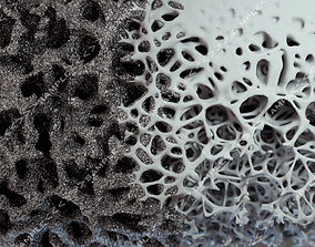 3D Bone structure and nanomaterial