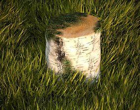 bark 3D model Birch stump with moss