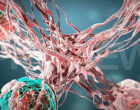 Cancer Static Hipoly Model 3D