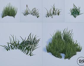 Realistic Grass 1 3D asset
