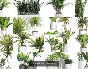 design Potted Plant 3D
