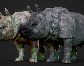 3D asset Indian Rhinoceros
