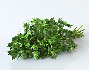 3D Parsley