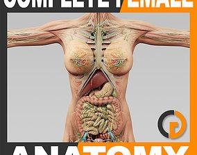 3D model Human Female Anatomy - Body Muscles Skeleton 1