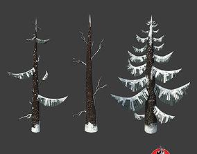 3D asset GRAND FIR TREE