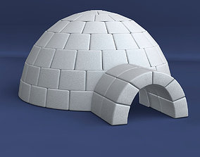 Igloo winter 3D model