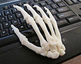 3D print model Human Hand-Right Full Scale assembled