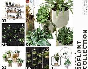 3D model Hanging Plant Pots Collection