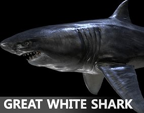 3D fish Great white Shark