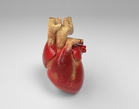 3D asset low-poly Heart science