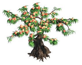 Plant - peach tree 032 3D model