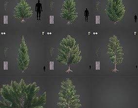 2021 PBR Red Juniper Collection - Juniperus 3D model