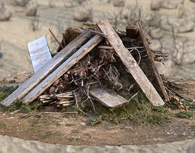 3D model Wood Debris PhotoScan