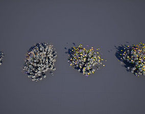 Brittle bush 3D asset low-poly