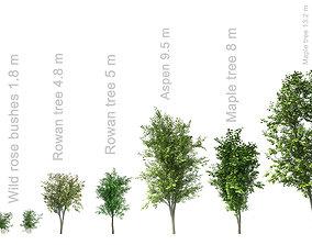 3D Trees set 7 trees