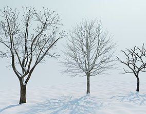 snow trees collection 3D model