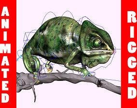 chameleon 3D model animated