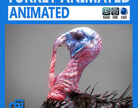 Animated Turkey 3D