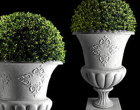 3D model Plant Collection 04