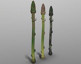 3D model Aspargus