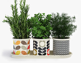 Kitchen Herbs In Pots Orla Kiely 3D model