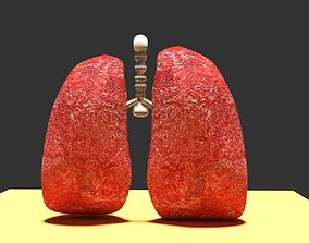 Human Lungs 3D model game-ready