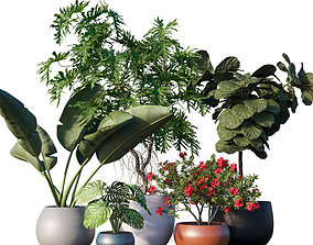 Plant set 08 pot 3D