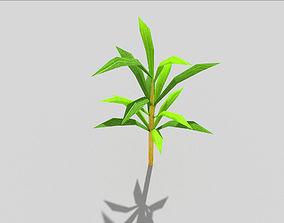 low poly beach plant 3D asset