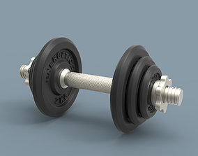 Cast Iron Dumbbell Energetics 3D