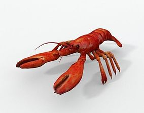 3D asset VR / AR ready Lobster