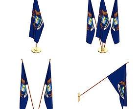 Michigan Flag Pack 3D model