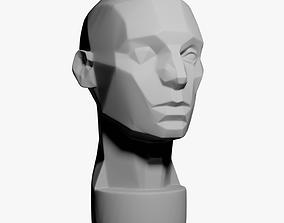3D model Asaro Head - Planes of the head
