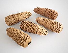 3D model Cones