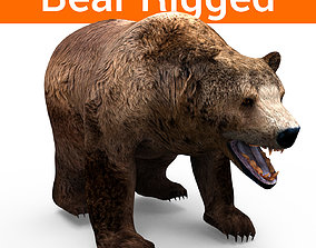 brown-bear animal 3d model rigged