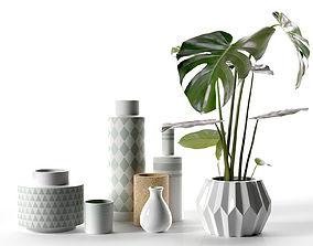 3D Vase Set with Monstera Plant