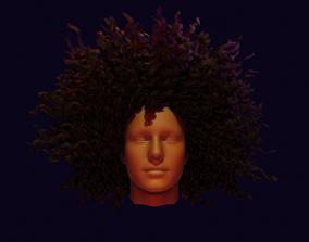 Realistic Hair curl 3D