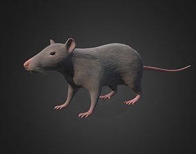 Rat - lowpoly 3d model realtime