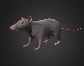 realtime Rat - lowpoly 3d model