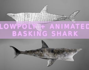 3D asset animated Basking Shark