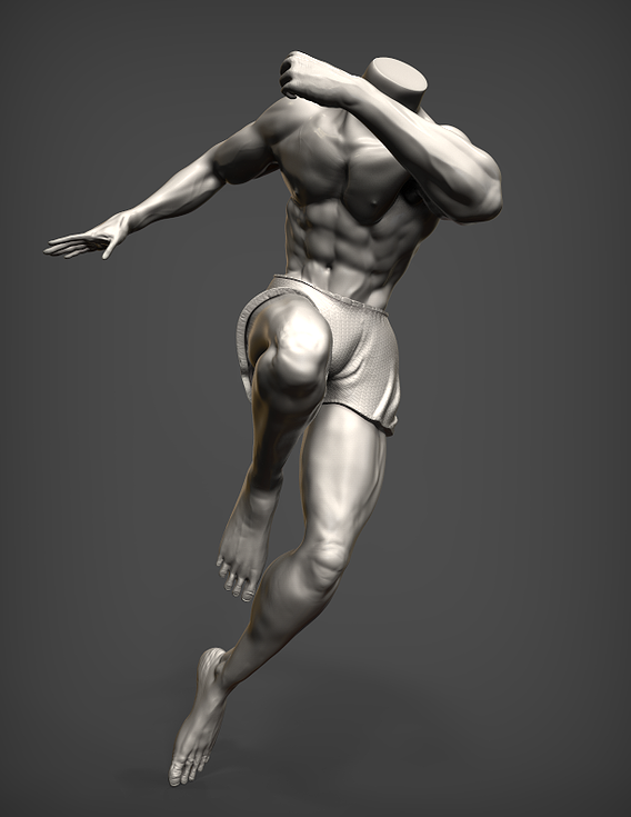 Anatomy in Action - Study #01