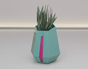 3D print model Flower pot or vase