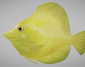 3D asset rigged Yellow Tang Fish